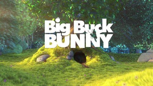 big buck bunny video demo